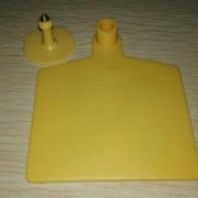 RFID tags for cattle from China supplier in low price
